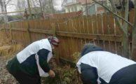 «Серебряные» волонтеры до 65 лет выступили инициаторами акции «Осенний день благоустройства»