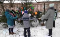Семейный эко-тур «Под Новый год»